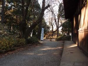 喜多院への道
