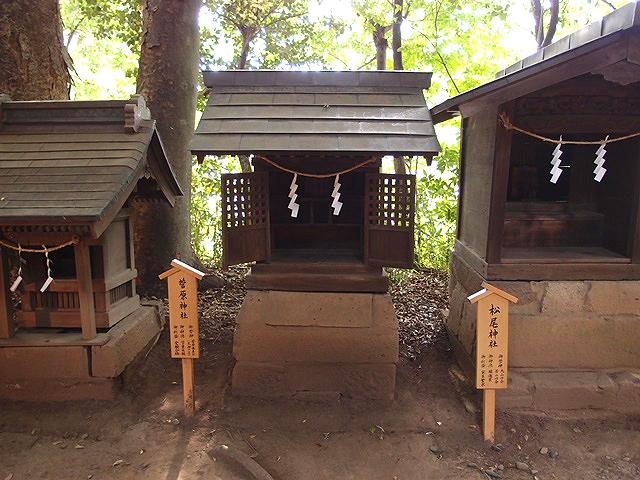 縁結びの川越氷川神社。良縁を呼び寄せる鯛みくじと風鈴の音