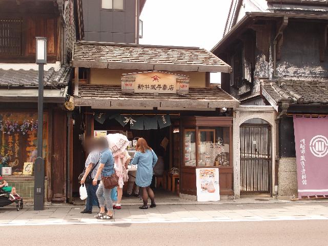 新井武平商店ヤマブ