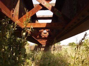 葛川橋梁の下