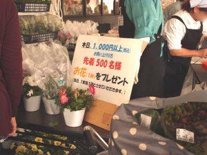 食育ソムリエ指導!JAいるま野 あぐれっしゅ川越で味わう地元野菜