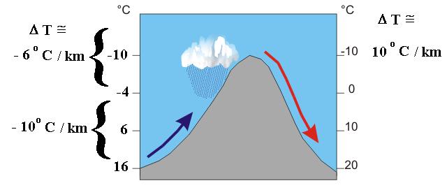 熊谷と何が違う?川越の気温が日本一暑いかもしれない原因・理由とは