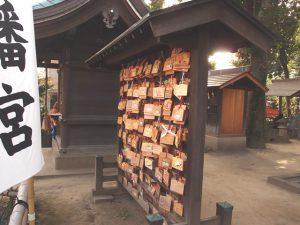 夫婦銀杏・相撲稲荷・縁結び。商店街裏のパワースポット川越八幡宮