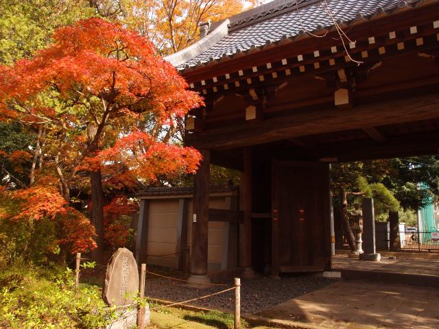 川越、秋の風景。観光スポットの紅葉を集めました