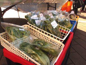 川越産野菜をもっと身近に!クレアパーク公園朝市