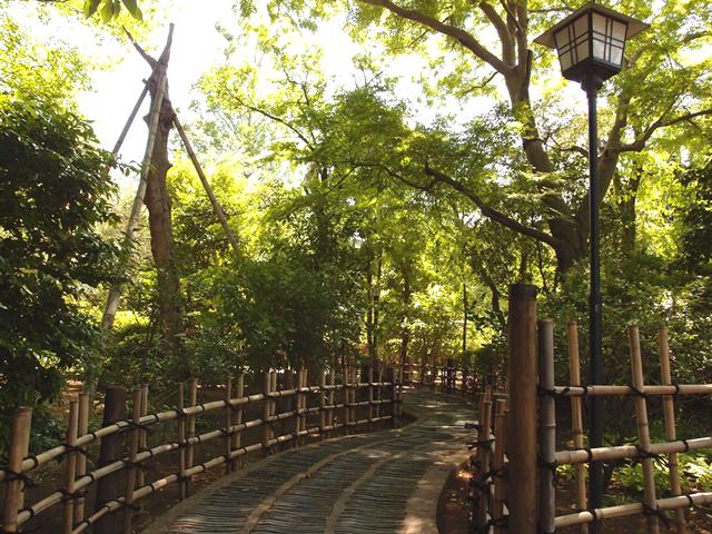 新緑の川越 活気溢れる初夏の小江戸散策のススメ