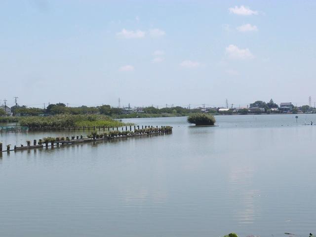 夏の最後は小江戸川越花火大会へ!地元民が穴場スポットを紹介します
