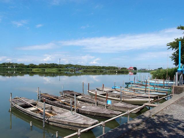 暑くても魅力いっぱいの街、川越。散策中に出会った夏の憧憬まとめ