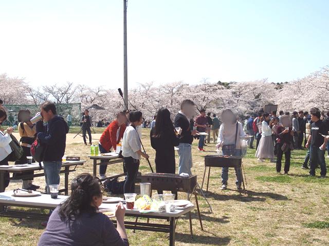 COEDO花見-Hanami- 川越のクラフトビールで桜に乾杯!