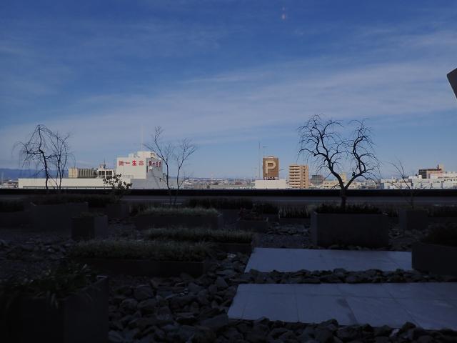 高い場所から見る川越の街並み|目立つけど隠れた写真映えスポット