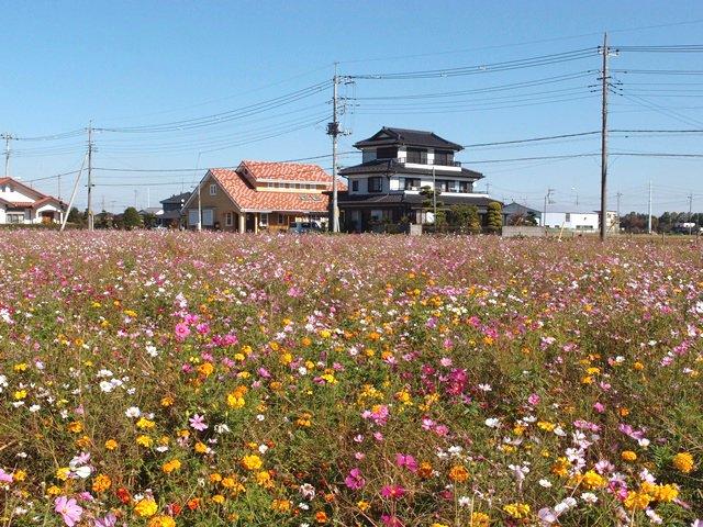 川越観光に便利な安い駐車場はココ!無料で停められるスペースも